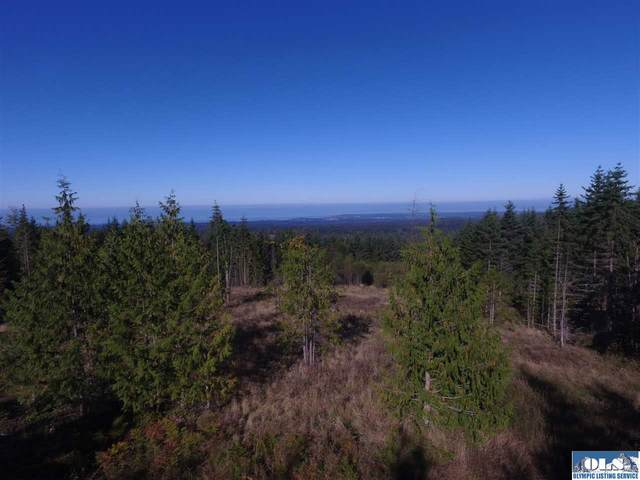Lot 1 Afternoon Hill Road, Port Angeles, WA 98362 (#331819) :: Priority One Realty Inc.