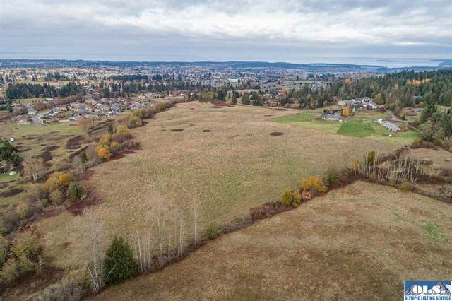 9999 River Road, Sequim, WA 98382 (#332045) :: Priority One Realty Inc.