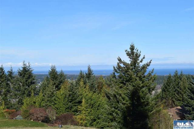 9 Fox Hollow, Sequim, WA 98382 (#340123) :: Priority One Realty Inc.