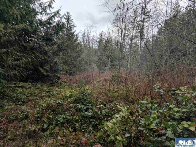 9999 Watershed, Port Angeles, WA 98362 (#340797) :: Priority One Realty Inc.