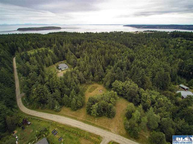 999 Critter Country Trail, Sequim, WA 98382 (#340920) :: Priority One Realty Inc.