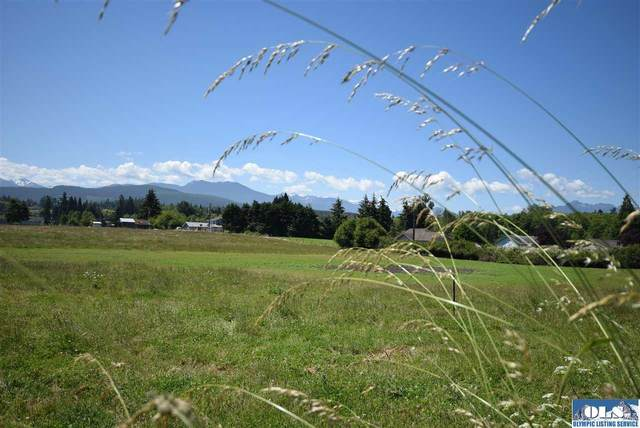 999 Spath Road Lot B, Sequim, WA 98382 (#340937) :: Priority One Realty Inc.