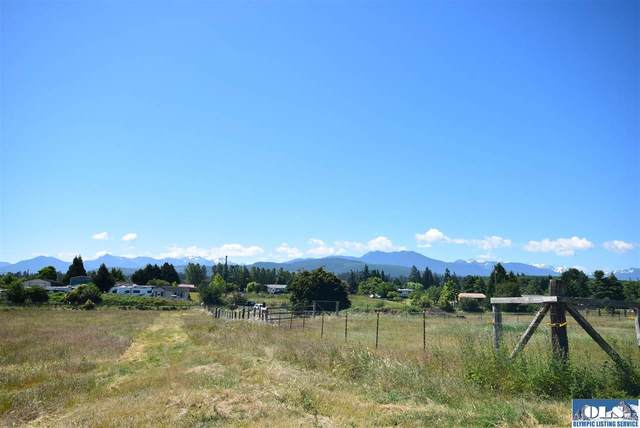 999 Runnion Road Lot C, Sequim, WA 98382 (#340938) :: Priority One Realty Inc.