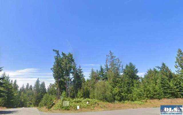 9999 Hidden Valley Rd., Port Angeles, WA 98362 (#341155) :: Priority One Realty Inc.