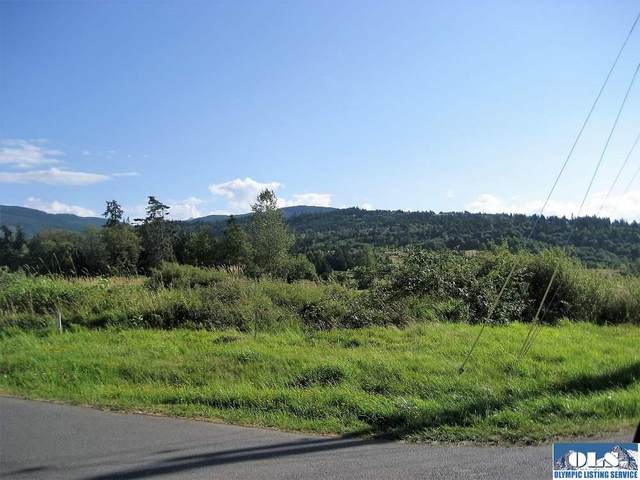 Sequim Bay & Bell Bottom, Sequim, WA 98382 (#341193) :: Priority One Realty Inc.