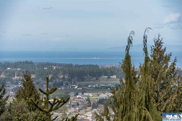 NNA Owls Nest Road, Sequim, WA 98382 (#341209) :: Priority One Realty Inc.