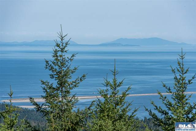 767 Louella Heights Drive, Sequim, WA 98382 (#341361) :: Priority One Realty Inc.
