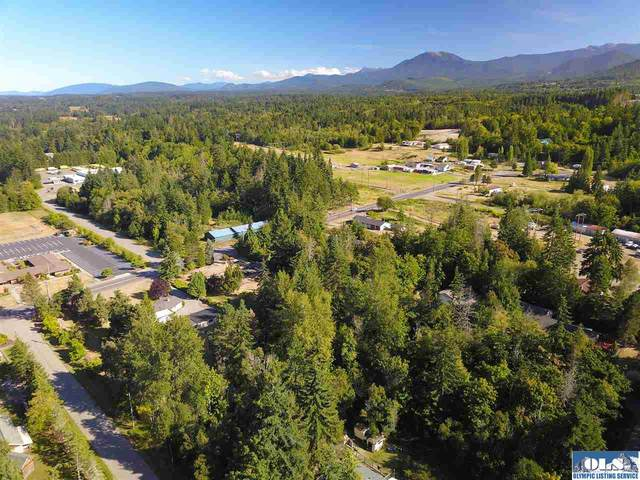 9999 Hughes Rd, Port Angeles, WA 98362 (#341367) :: Priority One Realty Inc.