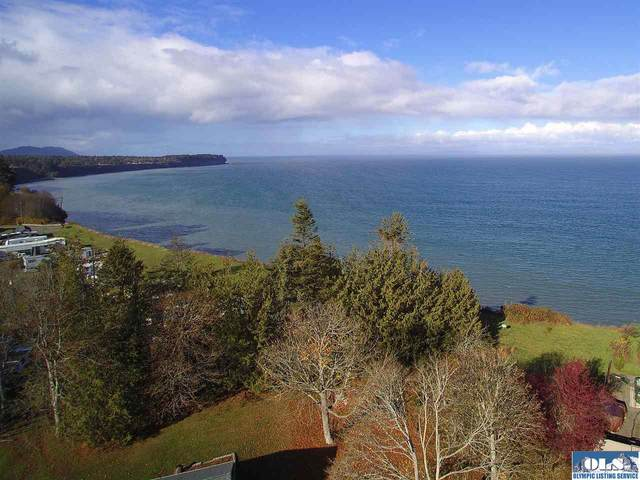1226 Dutch Dr, Port Angeles, WA 98363 (#341369) :: Priority One Realty Inc.