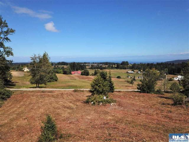 NKA Clearview Ln, Sequim, WA 98382 (#341379) :: Priority One Realty Inc.