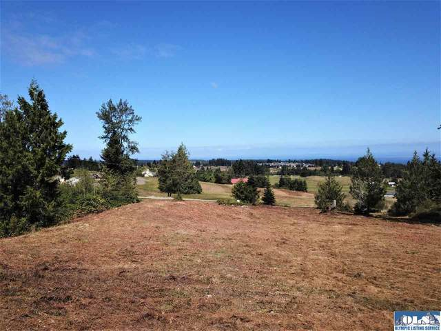 NKA Clearview Ln, Sequim, WA 98382 (#341380) :: Priority One Realty Inc.