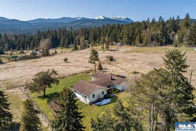 83 Lost Meadow Lane, Sequim, WA 98382 (#341443) :: Priority One Realty Inc.