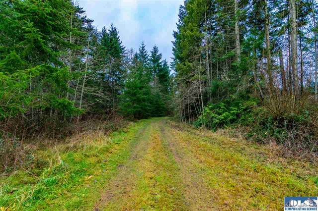 Lot 10 James Page Rd, Port Angeles, WA 98362 (#341490) :: Priority One Realty Inc.