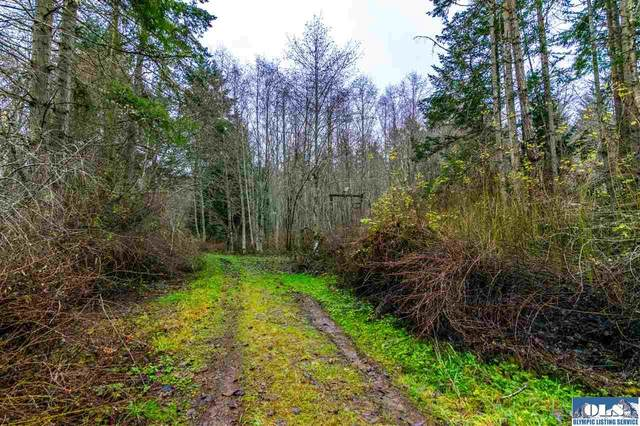 Lot 13 James Page Rd, Port Angeles, WA 98362 (#341492) :: Priority One Realty Inc.