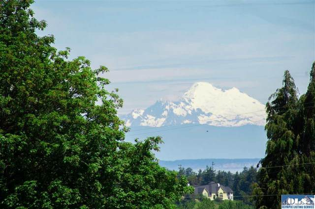 598 Brownfield Rd, Sequim, WA 98382 (#341517) :: Priority One Realty Inc.