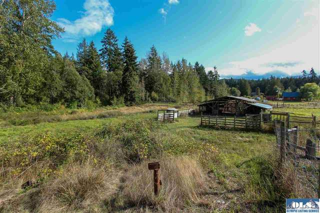 3906 S Cayanus, Port Angeles, WA 98363 (#341518) :: Priority One Realty Inc.