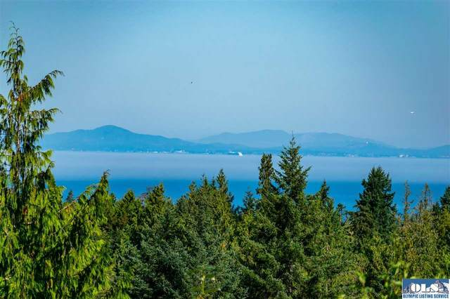55 Park Forest Drive, Port Angeles, WA 98362 (#341528) :: Priority One Realty Inc.