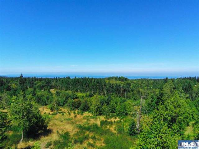 87 Park Forest Drive, Port Angeles, WA 98362 (#341531) :: Priority One Realty Inc.