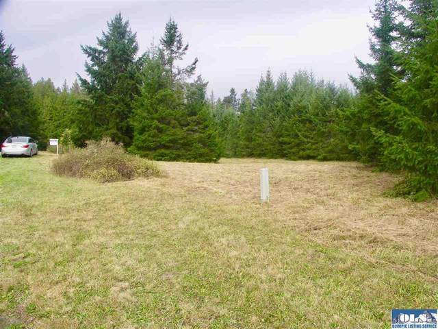 Lot 1 Misty Meadow Lane, Sequim, WA 98382 (#341662) :: Priority One Realty Inc.