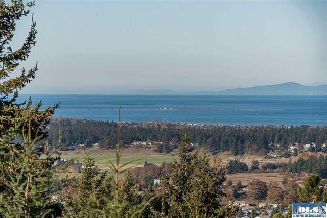 999 Owls Nest Rd, Sequim, WA 98382 (#341841) :: Priority One Realty Inc.