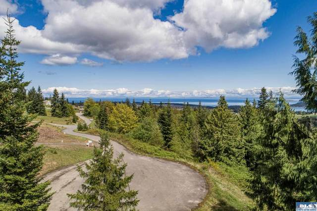 9999 High View Way, Sequim, WA 98382 (#350642) :: Priority One Realty Inc.