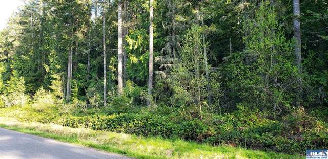 11 Autumn Rd, Sequim, WA 98382 (#350729) :: Priority One Realty Inc.