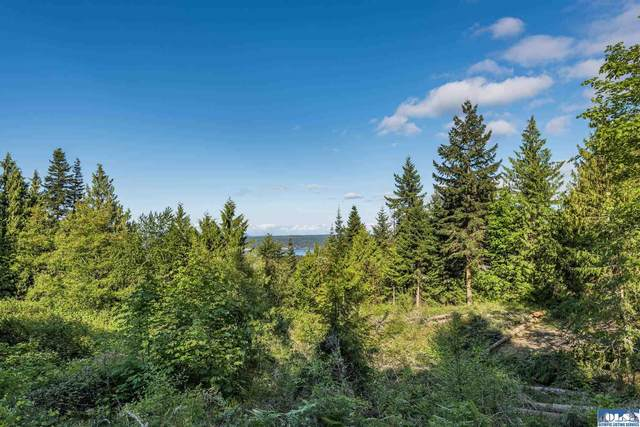 9999 High View Way, Sequim, WA 98382 (#350900) :: Priority One Realty Inc.