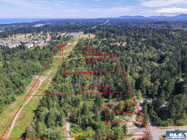 NNA Craig Avenue & Campbell Avenue, Port Angeles, WA 98362 (#351058) :: Priority One Realty Inc.