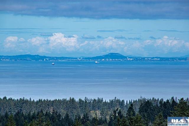 9999 Mcclure View Rd, Port Angeles, WA 98363 (#351154) :: Priority One Realty Inc.