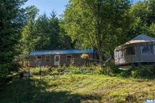191 E Old Mill Mountain Road, Port Angeles, WA 98362 (#351197) :: Priority One Realty Inc.