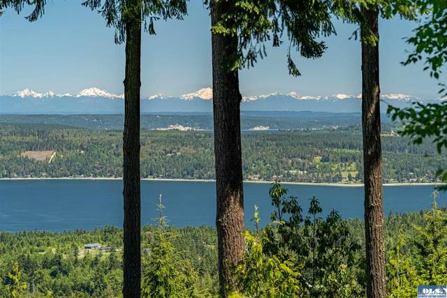 172 Overlook Trail, Sequim, WA 98382 (#350878) :: Priority One Realty Inc.