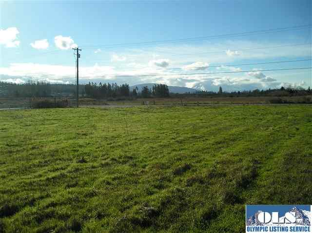 999999 Brown Road, Sequim, WA 98382 (#250215) :: Priority One Realty Inc.