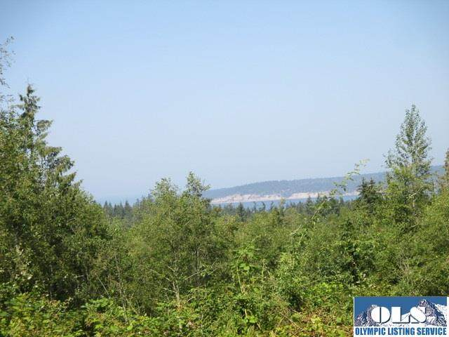000 Oso Vista Court, Sequim, WA 98382 (#321676) :: Priority One Realty Inc.