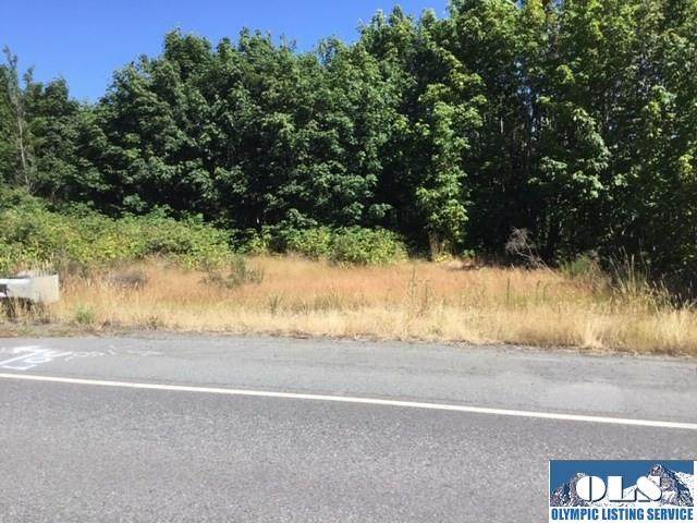 9999 Highway 101, Port Angeles, WA 98362 (#341084) :: Priority One Realty Inc.