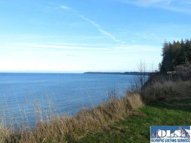 642 Gehrke, Port Angeles, WA 98362 (#350050) :: Priority One Realty Inc.
