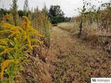 480 County Road 12 Road - Photo 25