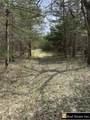 Butler Tract 7 Road E Road - Photo 5