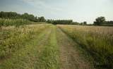 0 I County Road - Photo 29