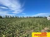 1102 P Road - Photo 16
