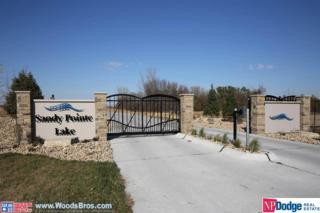 578 Golden Eagle Court, Ashland, NE 68003 (MLS #21704594) :: Nebraska Home Sales