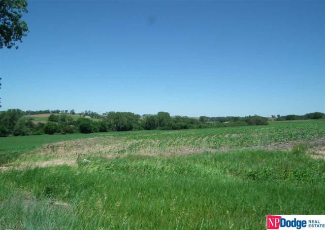 20.70 +/- AC Hwy 36, Bennington, NE 68007 (MLS #21707184) :: Omaha's Elite Real Estate Group