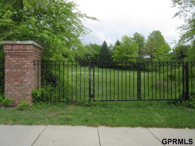 1225 N 138 Circle, Omaha, NE 68154 (MLS #21708726) :: Omaha Real Estate Group