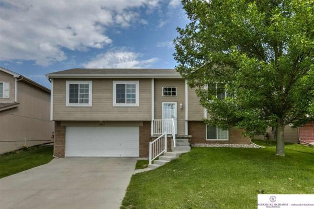 18668 Berry Street, Omaha, NE 68135 (MLS #21711479) :: Omaha's Elite Real Estate Group