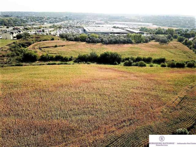 Land Lot S 25 Street, Bellevue, NE 68123 (MLS #21717113) :: The Briley Team