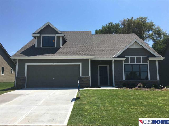 1103 Joann Drive, Blair, NE 68008 (MLS #21718831) :: Omaha Real Estate Group