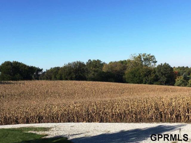 9048 S 230 Plaza Circle, Gretna, NE 68028 (MLS #21718925) :: Nebraska Home Sales