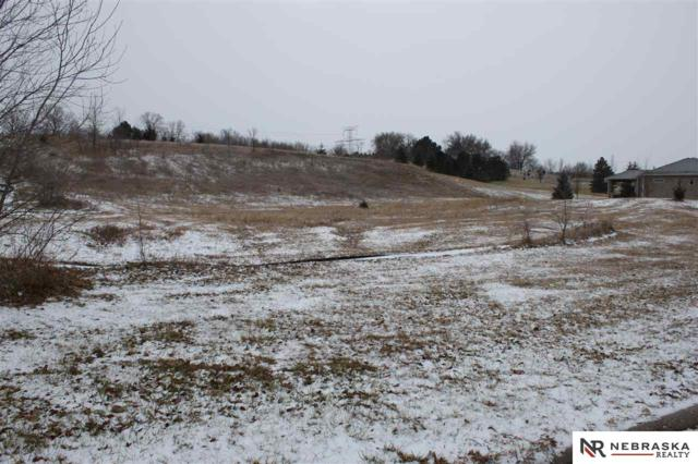 Lot 20 Heidi Hollo, Blair, NE 68008 (MLS #21722312) :: The Briley Team