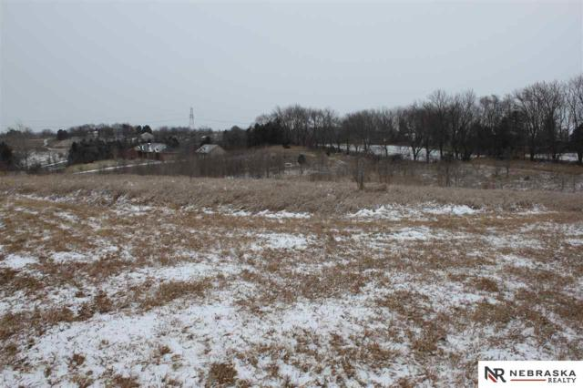 Lot 32 Heidi Hollo, Blair, NE 68008 (MLS #21722313) :: The Briley Team