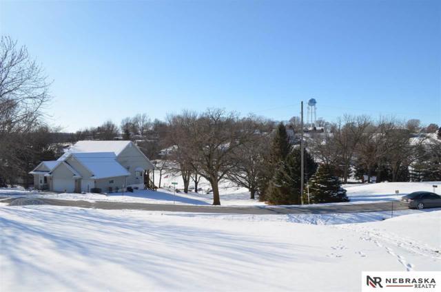 8525 Riverdale Road, Plattsmouth, NE 68048 (MLS #21722492) :: Omaha's Elite Real Estate Group