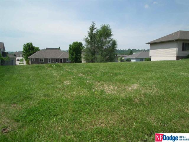 1349 Linden Drive, Blair, NE 68008 (MLS #21800736) :: The Briley Team